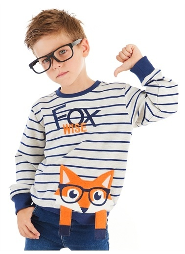 Denokids Tilki Çizgili Erkek Çocuk Sweatshirt Renkli